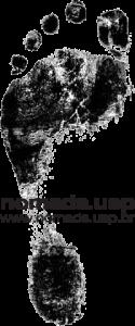 logo_pe_semfundo